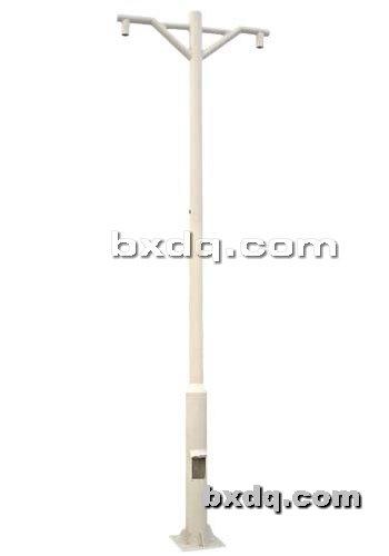 监控杆网提供生产室外灯杆厂家